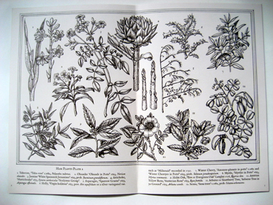 Garden of reason booklet inner spread 2
