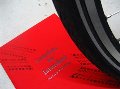 David book cover